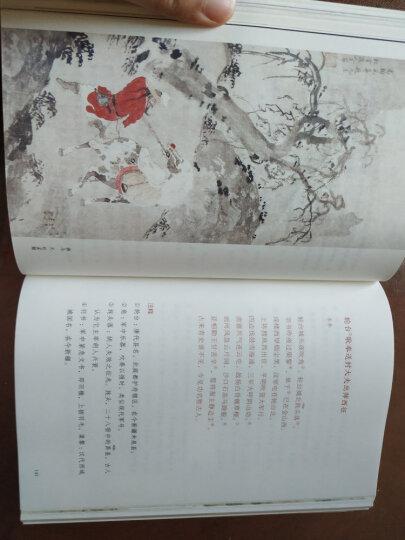 作家榜经典:儒林外史(未删节插图珍藏版,写透中国古代官场的百科全书式小说) 晒单图