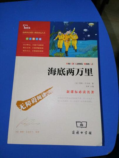 骆驼祥子+海底两万里(部编版教材七年级下册推荐阅读必读名著共2册)智慧熊图书 晒单图