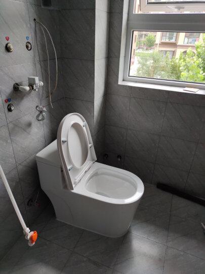 厕所 家居 马桶 设计 卫生间 卫生间装修 卫浴 装修 座便器 405_540