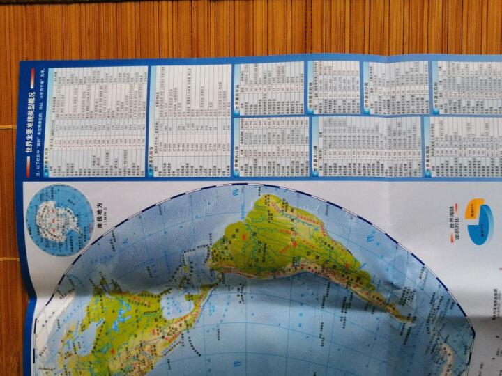世界地理地图(防水耐折 撕不烂地图)0.6米*0.435米 晒单图