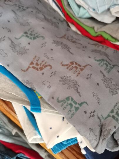 红豆(Hodo)儿童内衣套装纯棉男女中大童秋冬低圆领100%棉秋衣秋裤HD8095白色140 晒单图