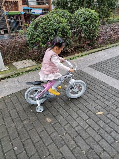 【可加长】健儿(jianer)儿童自行车男女小孩单车12/14/16寸 好评17000+ 16寸 晒单图