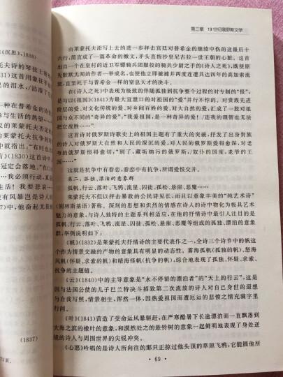 俄罗斯文学简史 晒单图