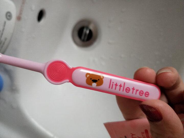 小树苗 儿童牙刷 婴儿宝宝训练牙刷 软毛 绿色 适合1-3岁 晒单图