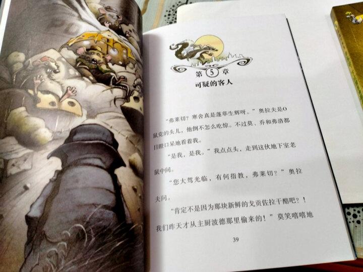 罗伯特·罗素作品集(插图版 套装共8册) 晒单图