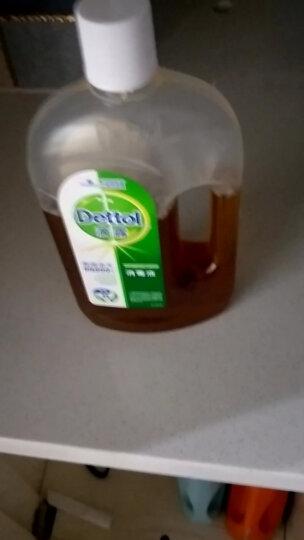 滴露Dettol 消毒液 1.8L 杀菌除螨  家居室内 宠物环境消毒 儿童宝宝内衣 衣物除菌剂 晒单图