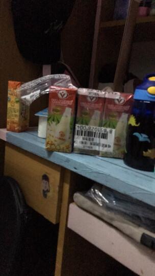 哇米诺特浓原味豆奶250ml*6盒 泰国进口vamino营养早餐奶饮品饮料纸盒装 晒单图