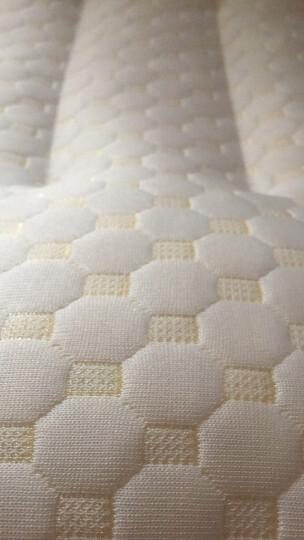 南极人 枕芯家纺 天然碎乳胶枕头 颗粒枕颈椎枕 单只装 60*40cm 晒单图