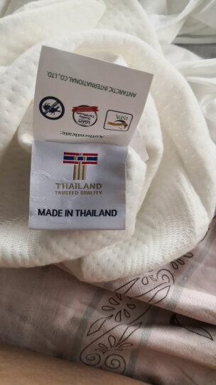 paratex 泰国进口天然乳胶枕头 枕芯 人体工学型乳胶枕 94%乳胶含量  送礼红色礼盒装 晒单图