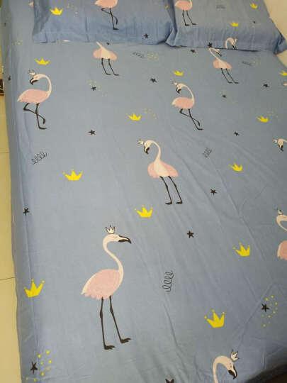 猫薄荷家纺 纯棉床笠单件 1.5米1.8米床全棉床罩床套防滑床单床垫套席梦思保护套 快乐猫 180*200cm床笠+信封枕套一对 晒单图