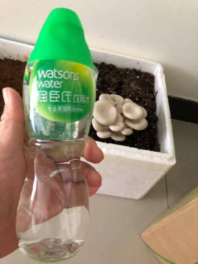 屈臣氏(Watsons)饮用水(蒸馏制法)热爱105度 百年水品牌 旅行聚会必备 会议用水 280ml*35瓶 整箱装 晒单图