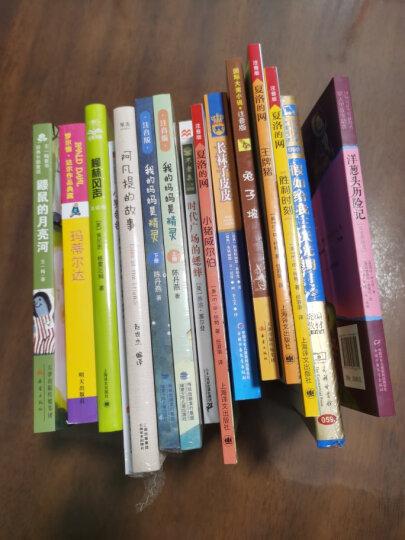 【新版定价35元】长袜子皮皮 新版林格伦作品美绘版 小学生儿童故事文学绘本书籍[7-14岁] 晒单图