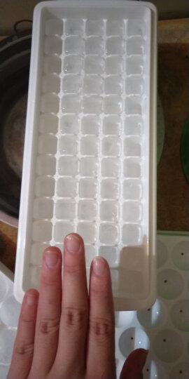 FaSoLa进口品质带盖冰格盒模具制冰盒冰块模具 65格买一送一 晒单图