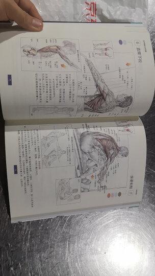 肌肉健美训练图解(修订版)新老包装随机发放 晒单图