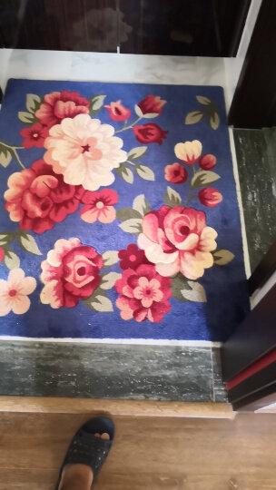 进门地垫门垫脚垫入户门厅垫玄关门口卫生间厨房吸水防滑垫子家用浴室卧室客厅耐脏 三朵玫瑰 50*80cm 晒单图