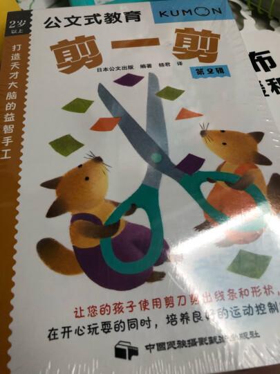 公文式教育:打造天才大脑的益智手工第二辑(套装共4册) 晒单图