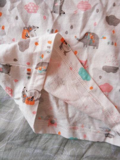 俞兆林(YUZHAOLIN) 儿童柔棉家居服套装男女童家居服2件套小孩衣服中小童学生空调服春夏新品 可爱鸽子浅蓝 80CM 晒单图