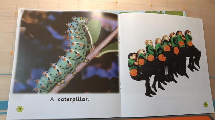 大猫英语自然拼读三级1 Big Cat Phonics(小学三年级 读物5册+家庭阅读指导1册+拼读卡 点读版 附MP3光盘1张) 晒单图