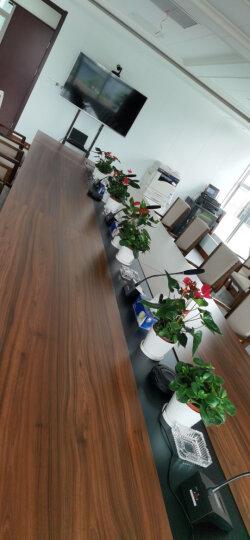 润普视频会议解决方案/网络教学摄像头/会议摄像机/全向麦设备/软件系统终端平台 RP-V5-1080(5倍变焦1080P) 晒单图