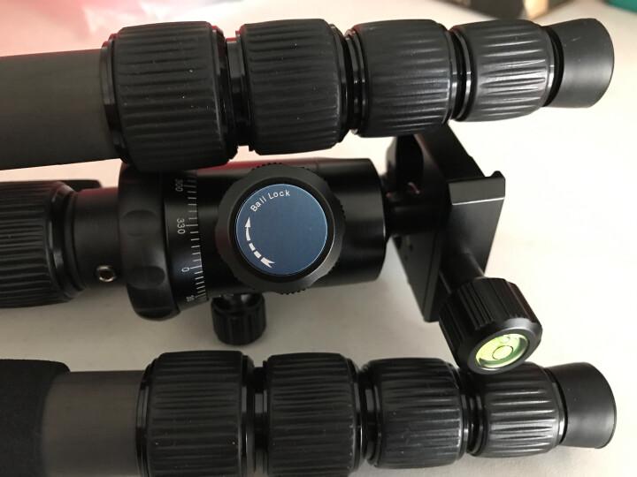 思锐(SIRUI)三脚架 A1205+Y11 碳纤维含云台佳能尼康单反相机三角架 反折单反相机三脚架 可拆独脚架 晒单图