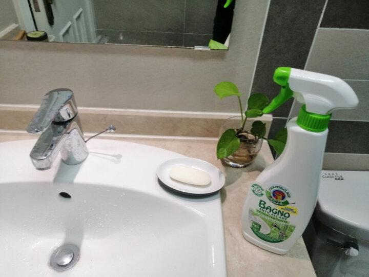 大公鸡管家CHANTECLAIR 玻璃/镜面多功能清洁剂 汽车玻璃清洁剂 (意大利进口)  625ml 晒单图