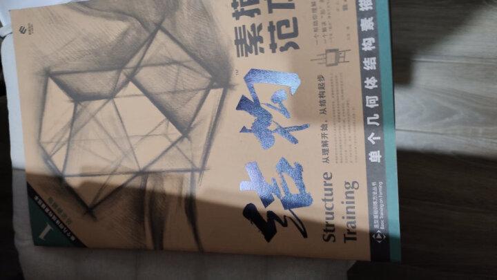 结构素描范本7:石膏头像结构素描范本(黄金典藏版) 晒单图
