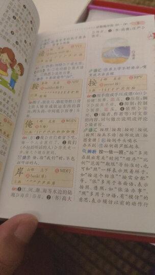 小学生多功能词典(彩图版)新课标学生专用辞书工具书 开心辞书 晒单图