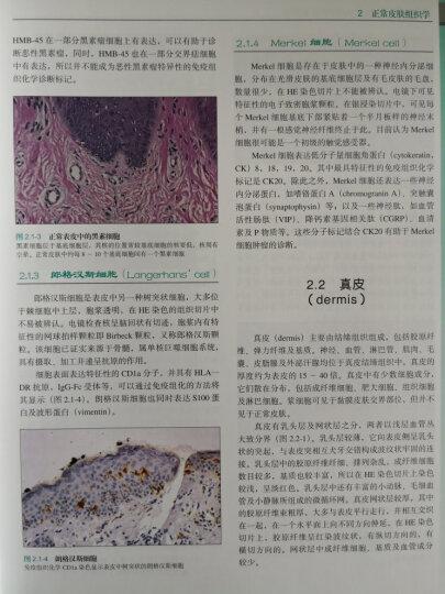 皮肤病的组织病理学诊断(第3版) 晒单图