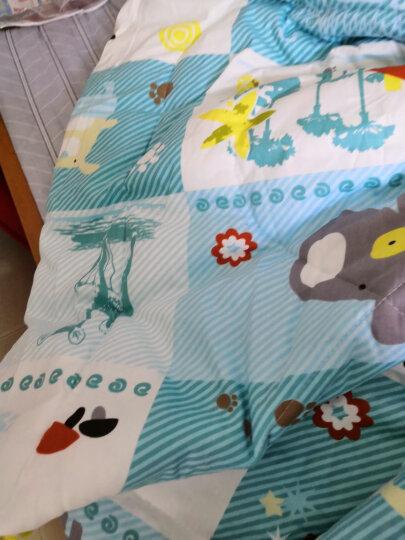 象宝宝(elepbaby)儿童被子婴儿被子被罩夏季空调被夏凉被毛巾被盖被幼儿园被子被褥120X150CM(小鹿斑比) 晒单图