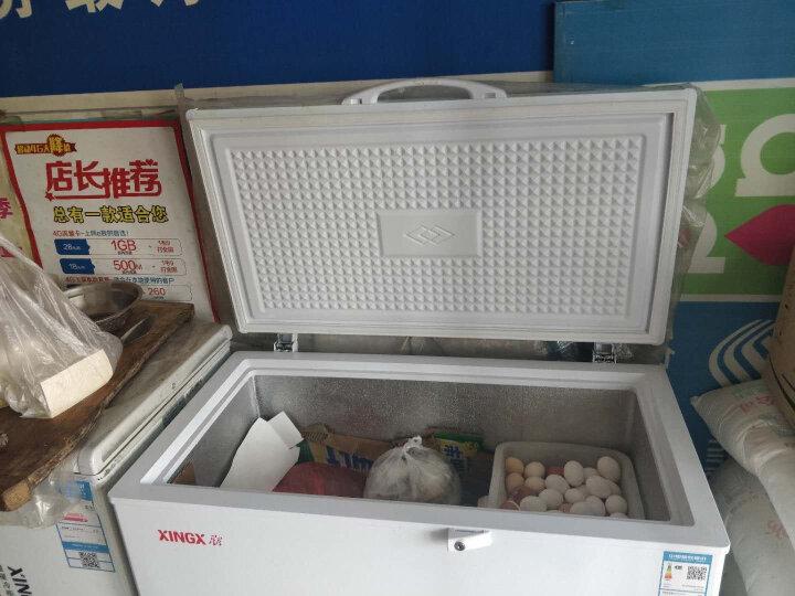 星星(XINGX) 219升 商用家用单温单箱冰柜 冷藏冷冻转换冷柜 顶开门冰箱 BD/BC-219E 晒单图