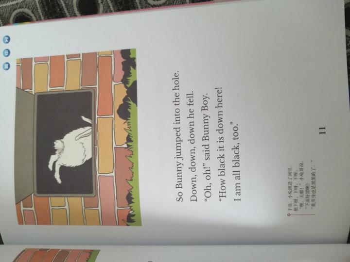 美国小学英语4AB(套装共2册) 晒单图