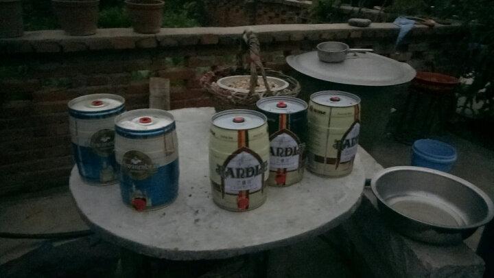 天鹅城堡(Schwanenbrau)小麦白啤酒500ml*8听礼盒装 德国原罐进口 麦香四溢 晒单图