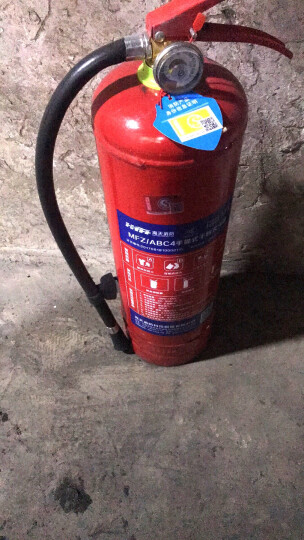 神龙 干粉灭火器4公斤 车载家用商用灭火器4kg  MFZ/ABC4  消防器材 厂家批量直发 定制 晒单图