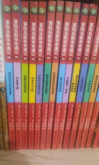 冒险岛数学奇遇记41-45(双螺旋童书) 晒单图