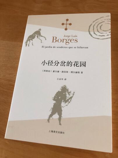博尔赫斯全集·第一辑:杜撰集 晒单图