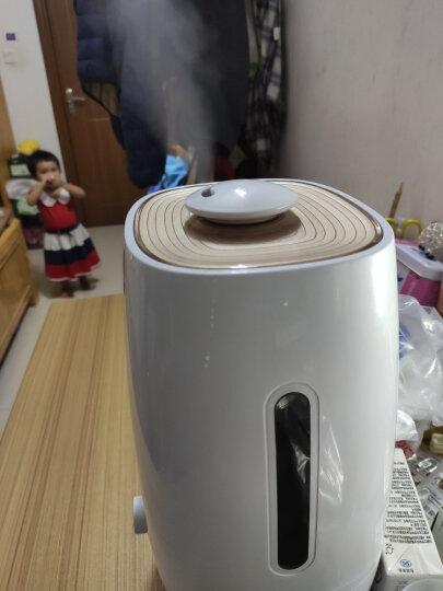 小熊(Bear)加湿器卧室迷你 大雾量空气加湿器 家用办公室桌面静音香薰机 5L大容量 JSQ-A50U1 晒单图