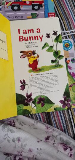 我是一只小兔 I am a Bunny 进口原版 儿童启蒙英语绘本  纸板书 晒单图