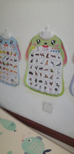 乐乐鱼发音有声挂图儿童益智早教玩具宝宝识字有声卡片幼儿启蒙认知学习玩具学数学故事篇 晒单图