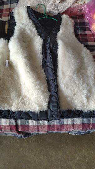 冬窝 羊毛马甲男士秋冬季保暖皮毛一体马夹 加绒加厚中老年皮坎肩 枣红色 L 晒单图