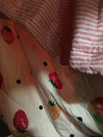 里外全棉空调被棉花被夏凉被春秋被芯可机洗薄被子暖气被儿童学生被子 小碎花 150*200cm/约2斤【棉花填充】 晒单图