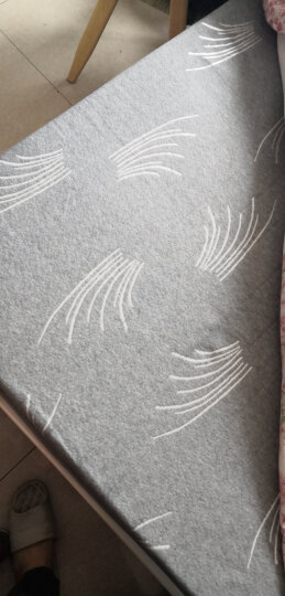 初漫天然乳胶床垫记忆棉床垫子床褥1.5米1.8米榻榻米床垫可折叠加厚打地铺学生单人宿舍记忆海绵褥子 尊贵白蓝-加厚9厘米舒爽款 1.5*2.0m 晒单图