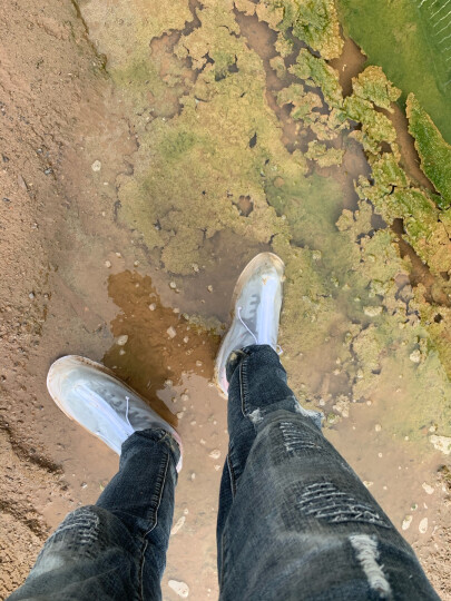 捷昇(JIESHENG) 雨靴雨鞋 男女通用防水防滑雨鞋套加厚底pvc透明雨靴 3XL码 晒单图