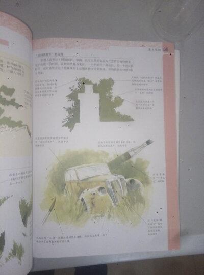 世界绘画经典教程:素描与色彩的极致表现 晒单图