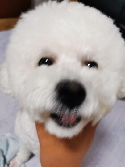 麦富迪 宠物狗狗零食大礼包800g 晒单图