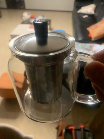 尚明(samaDOYO)耐热玻璃茶壶耐高温泡茶壶煮茶壶不锈钢茶水分离过滤家用大容量泡茶器加厚茶具套装 【店长推荐】700ml单壶(2-4人使用) 晒单图
