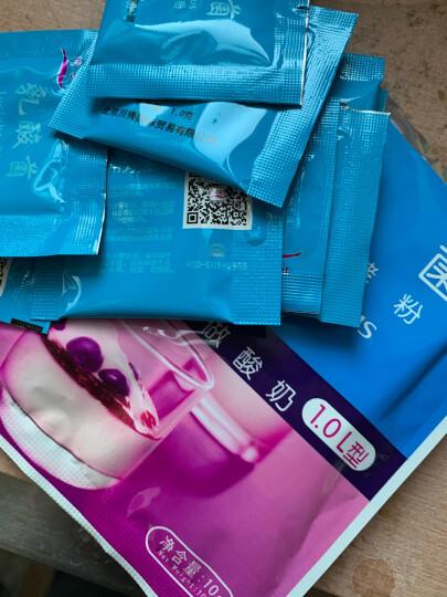 川秀 双歧杆菌10菌 酸奶发酵菌 酸奶发酵剂 乳酸菌酸奶菌粉发酵粉 家用酸奶机酸奶粉菌粉10g 晒单图