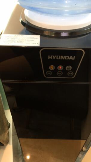 HYUNDAI饮水机立式双玻璃防尘门温热型BL-LWS12 晒单图