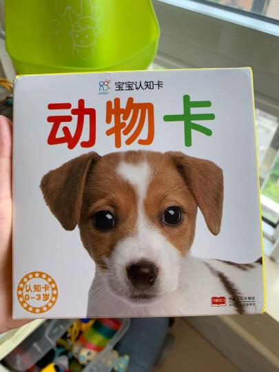 0-3岁宝宝认知卡:动物卡+认物卡+识车卡+果蔬卡(套装全4册)·海润阳光 晒单图