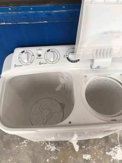 上海(shanghai) 6.5公斤 半自动洗衣机 家电 双缸 双桶洗衣机 脱水 波轮家用洗衣机 XPB65-SH265DS白色 晒单图