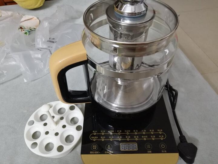 美的(Midea)养生壶电水壶烧水壶热水壶煮茶壶花茶壶电茶壶煮水壶煮茶器1.5L内带滤网WGE1703b 晒单图